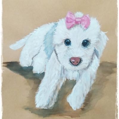 Ilustración mascota Kira