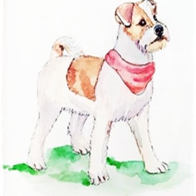 Ilustración Mascota Chester